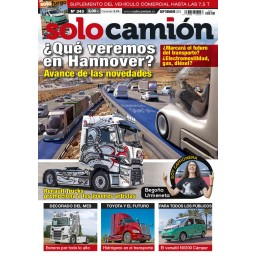 SOLO CAMION Nº343